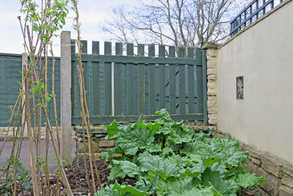 Spring Is Here! Call Us For Garden Fence Installation Service & Repair In Everett